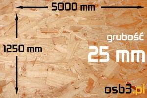 Płyta OSB3 sp 25mm/1250x5000